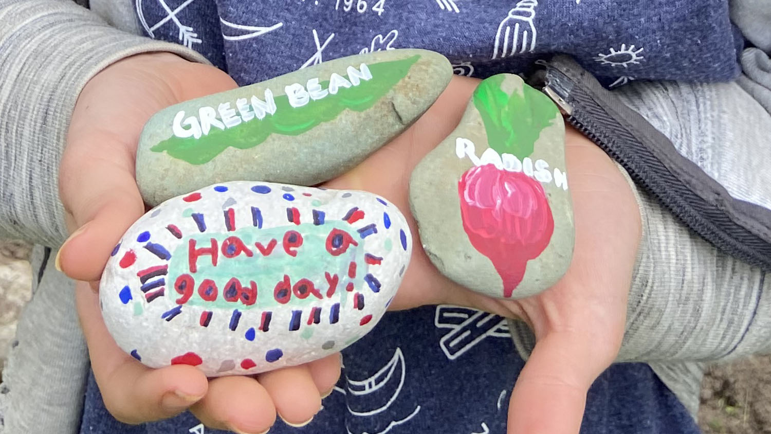 """Two hands holding rocks with drawings labeled """"green bean,"""" """"radish,"""" and """"Have a good day!"""""""