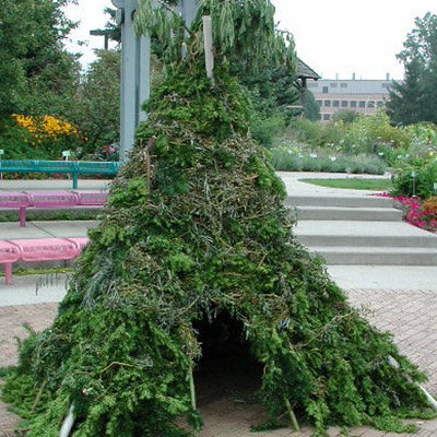 A teepee-shaped structure built of sticks and other plant material, including leafy branches and ivy.