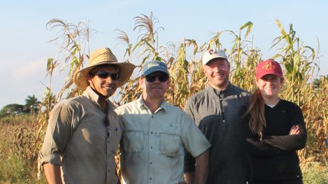 Jim Holland and other corn researchers in front of a field of dry corn
