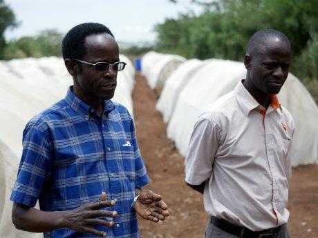 NCState graduate Robert Mwanga (left) on a research farm outside Kampala, Uganda.