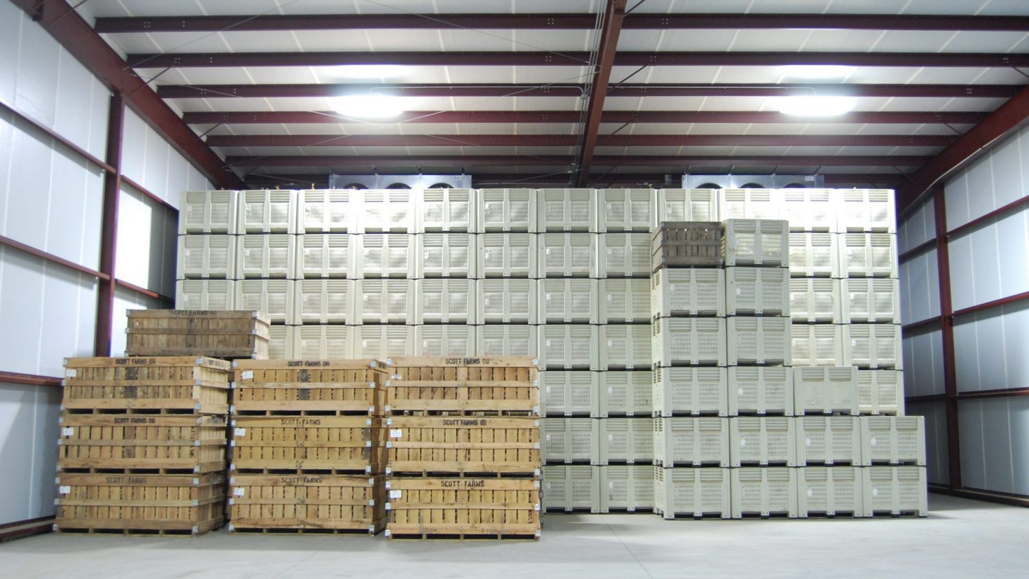 Large warehouse space with bins lined from wall to wall and floor to ceiling
