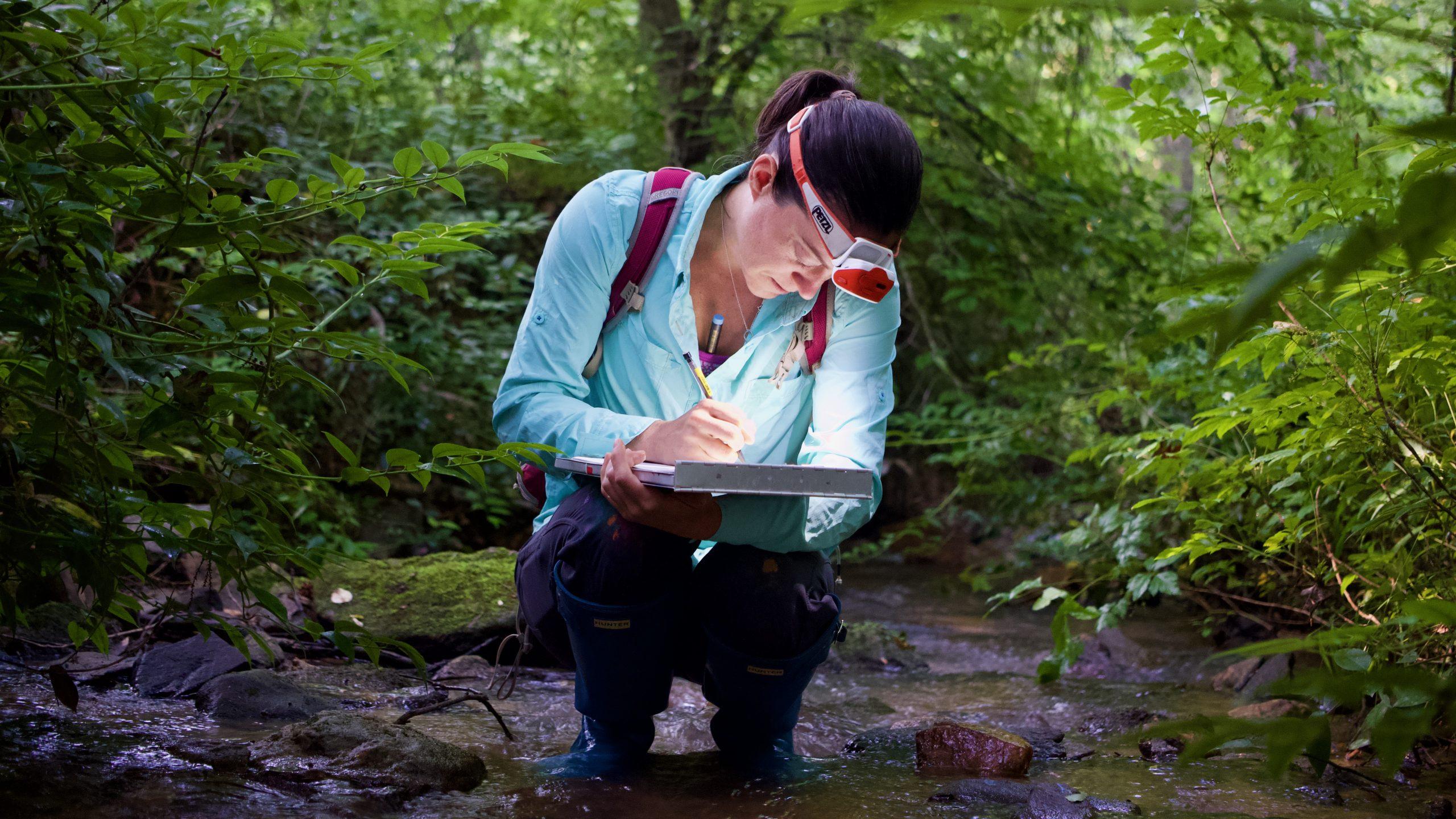 Aquatic research and stream ecology