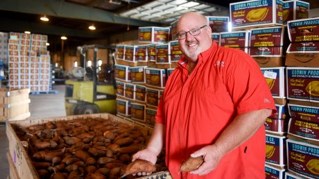 David Godwin with a bin of sweetpotatoes in a packing house