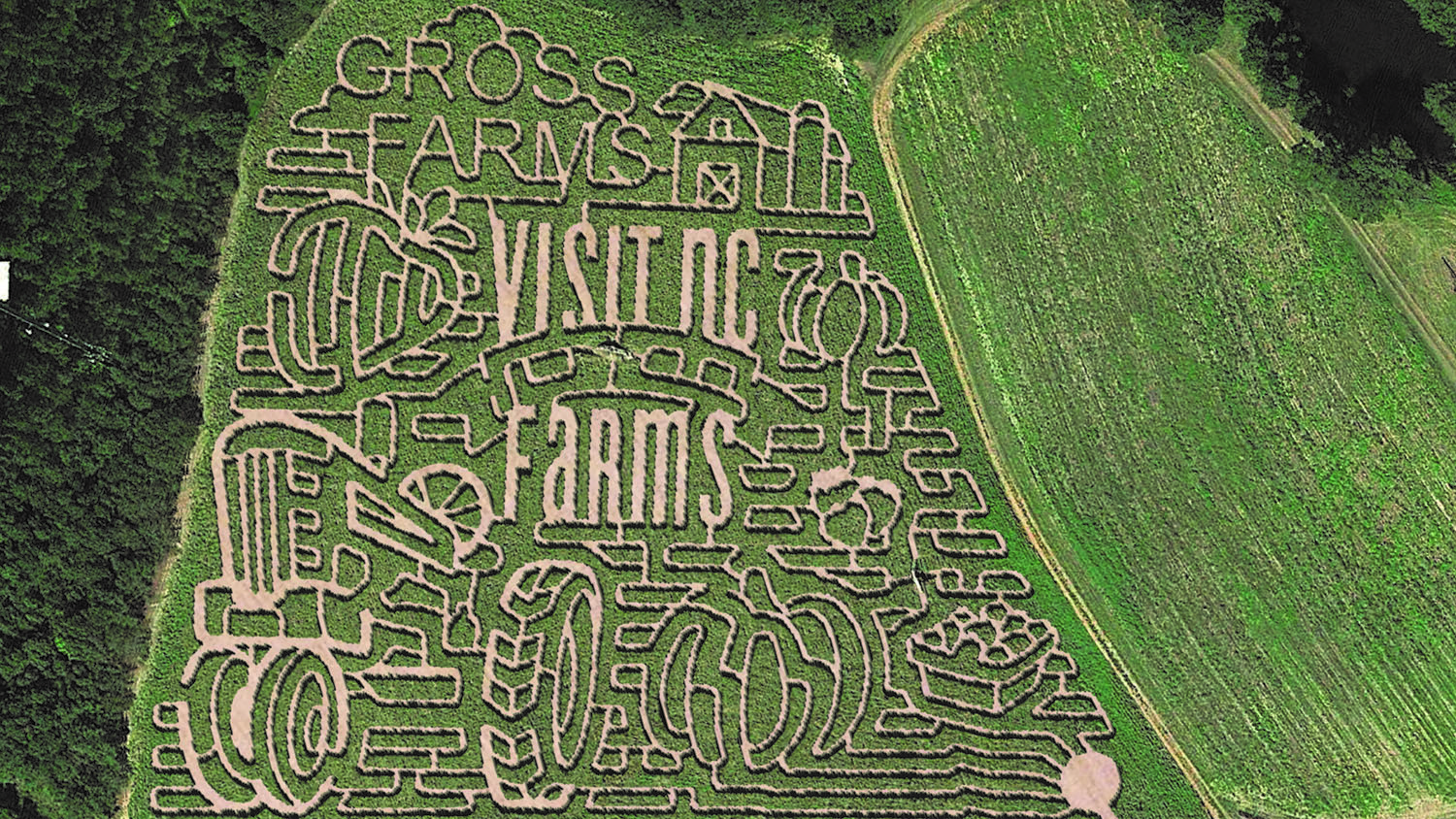 "Aerial view of corn maze that says ""Gross Farms"" and ""Visit NC Farms"""